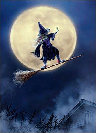 Girl Rides Broom As Skateboard Funny Juvenile Halloween Card