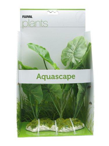 - Fluval Chinodorus Plant for Aquarium, 11.5-Inch