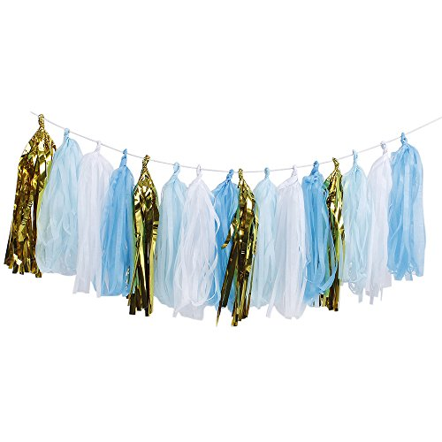 ZOOYOO Tissue Paper Tassels, Tassel Garland Banner for Event & Party Supplies, 20 pcs DIY Kits (Blue)