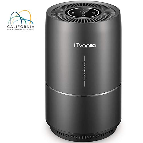 AirPurifier,iTvanila Home Air Purifiers for Smokers Odor Pets, 3in1 True HEPA Filter, Quiet in Bedroom, Filtration System Cleaner, Optional Night Light, 2 Years Warranty (Holmes Kids Humidifier)