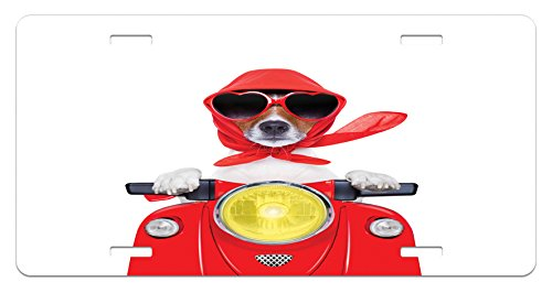 Dog Driver License Plate by Ambesonne, Stylish Canine with Scarf Sunglasses Fashion Model Riding Scooter Funny Animal, High Gloss Aluminum Novelty Plate, 5.88 L X 11.88 W Inches, - Canine Sunglasses