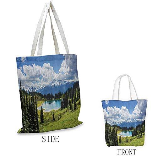 Travel Bag, Lightweight Americana Landscape Decor Pastoral Pond with Evergreen Wanderlust Relax Paradise Image, 16.5