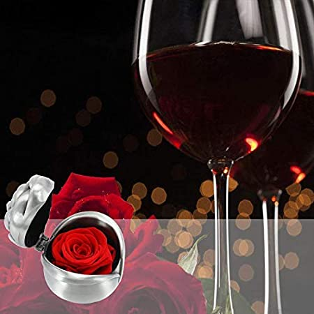 Gift for Girlfriend Wife Anniversary Valentines Day Exquisite Fresh Roses Upscale Immortal Flowers Best Gift for Female Birthday Christmas Valentines Gifts Silver-Red Red Rose
