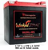 Renegade RG30L-WS 12 Volt 30 AH Ultra Premium Wicked Start 600+ CCA Touring Battery