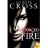 Forged in Fire (The Vessel Trilogy)