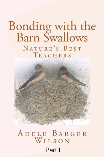 Bonding with the Barn Swallows: Nature's Best Teachers, Part I: Mud on the Porch -- The Swallows Introduce Themselves