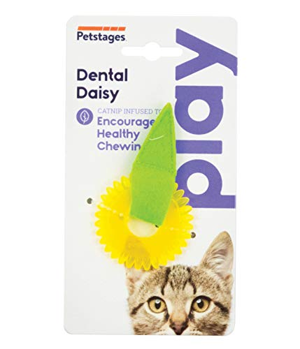 Petstages Dental Daisy Catnip Oil Infused Cat Chew Toy ()