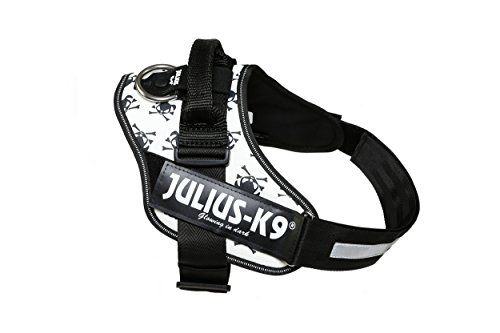 Julius-K9 IDC-Power Harness, Halloween with Skull and Crossbones, Size: 2/71-96 cm/28-37.5