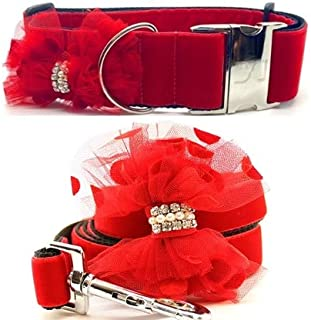 "product image for Diva-Dog 'Mrs Claws' Custom 2"" Extra Wide Medium Dog Collar with Plain or Engraved Buckle, Matching Leash Available"