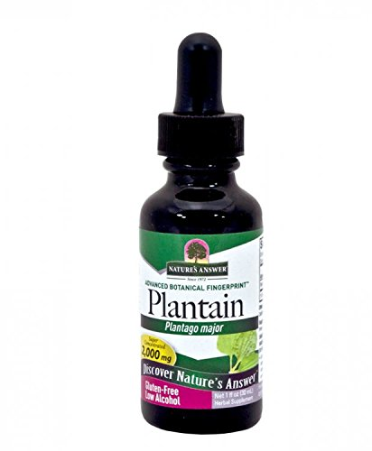 Nature's Answer Plantain Leaf with Organic Alcohol -