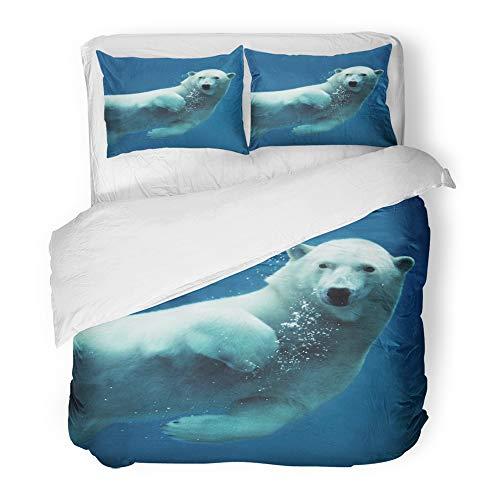Arctic Ocean Underwater Camera - 2