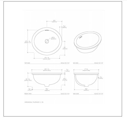 Waterworks Manchester Drop In Oval Vitreous China Bathroom Sink in Cool White 20 1/2'' x 17'' x 8 1/4'' by Water Works (Image #2)