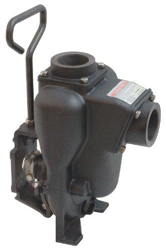 Banjo 200POI Cast Iron Centrifugal Pump Head, Gas Engine Driven, 50 Max Head (ft), 45 psi Max Pressure, 2