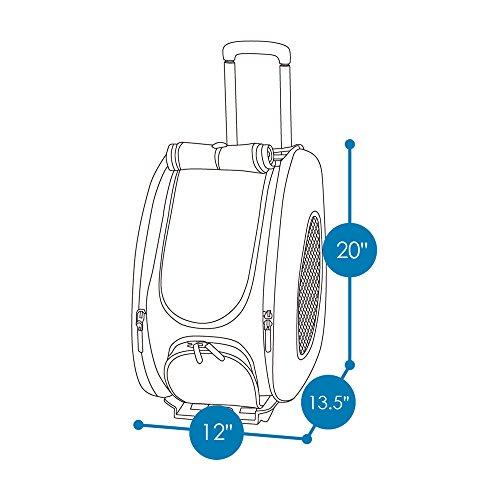 ibiyaya 4 Pet Backpack + on for and