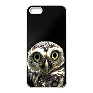 For SamSung Note 3 Phone Case Cover Owl in the Dark Hard Shell Back White For SamSung Note 3 Phone Case Cover 332301