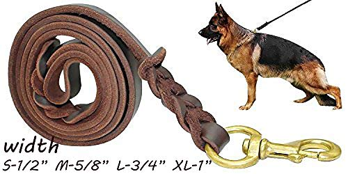 Fairwin Braided Leather Dog Training Leash 6 Foot - 5.6 Foot Military Grade Heavy Duty Dog Leash for Large Medium Small Dogs (5/8' Width, Brown) 004