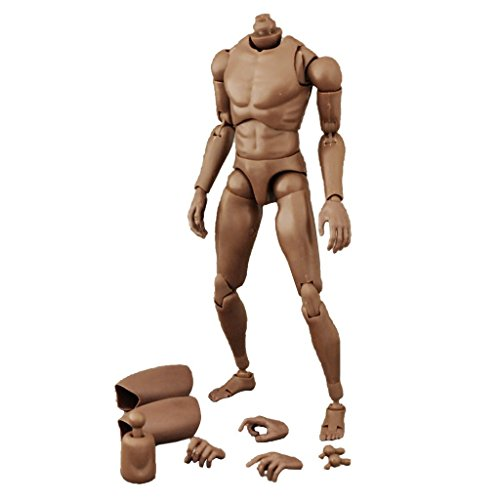 Search : ZYAQ 1/6 Scale Narrow Shoulder Action Figure African American Male Muscular Body Toys Doll for TTM18 TTM19 Hot Toys