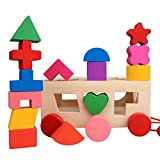 Sacow Building Blocks Toys, Baby Wooden Learning Geometry Building Blocks Educational Toys 3D IQ Puzzle for Kids
