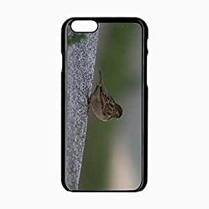 iPhone 6 Black Hardshell Case 4.7inch sparrow sitting feathers color Desin Images Protector Back Cover