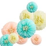 Fonder Mols Tissue Paper Chrysanth Flowers Tissue Flower Pom Centerpiece for Wedding Backdrop Archway Baby Shower Nursery Wall Decor (Set of 9, Ivory Peach Mint)