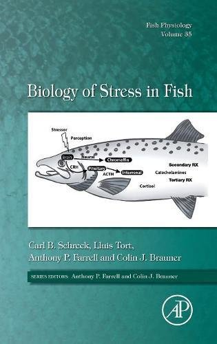 Biology Of Stress In Fish, Volume 35 (Fish Physiology)