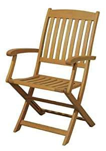 Arboria 2-Pack Spontaneity Folding Armchair