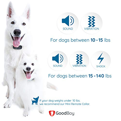 GoodBoy Small Waterproof Training Collar with Multiple Training Modes