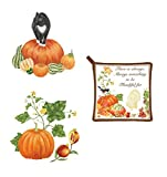 Alice's Cottage Fall Autumn Winter Kitchen Flour Sack Dishtowel Set – 100% Cotton (Pumpkin Cat)