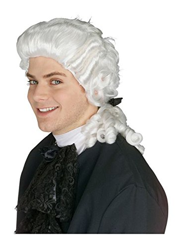 RUBIE'S COSTUME COMPANY Colonial Judge Wig, White, One Size -