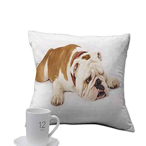 (Tankcsard Comfort Home Decor Gifts case English Bulldog,Sad and Tired Bulldog Laying Down European Pure Breed Animal Photography,Cream Brown.jpg 18