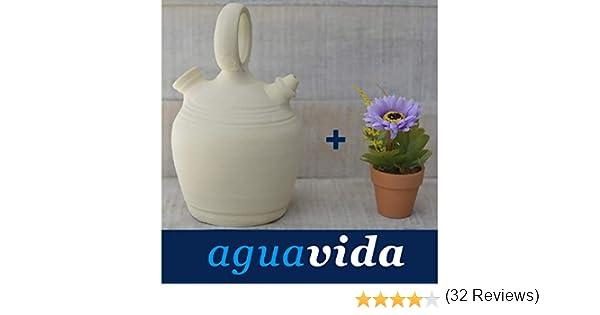 Dispensador de agua H2O, 3 litros (34x18x15): Amazon.es: Hogar