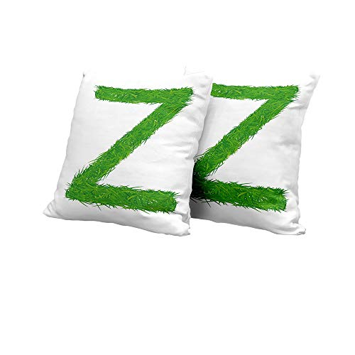 car seat Cushion Cover Letter Z,Spring Capital Z Made Out of Grass Ladybug Butterfly Daisy Chamomile Flowers,Green Multicolor Outdoor Pillow Covers 16x16 INCH 2pcs