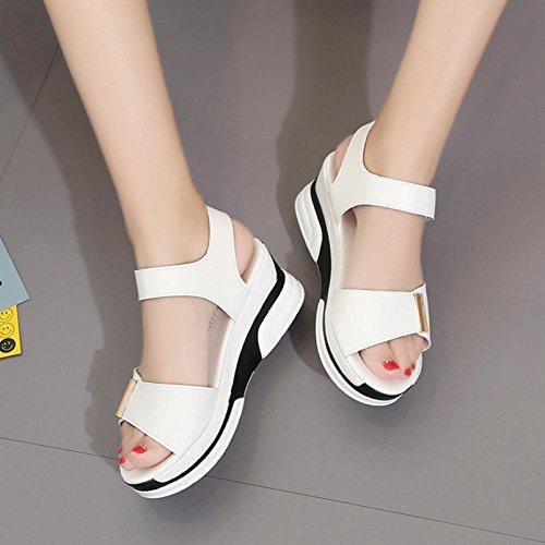 Sandalias De Mujer, Internet Sandalias De Verano De Las Mujeres Peep-Toe Low Flip Flops Blanco