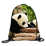 Baby Pandas Unisex Home Gym Sack Bag Sport Drawstring Backpack Bag