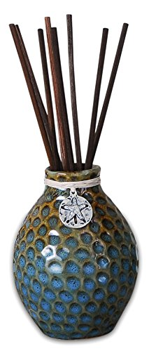 (Pomeroy Aquatica Reed Diffuser, Turquoise,Brown)