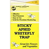 Yellow Sticky Aphid Whitefly Trap Pack of 15