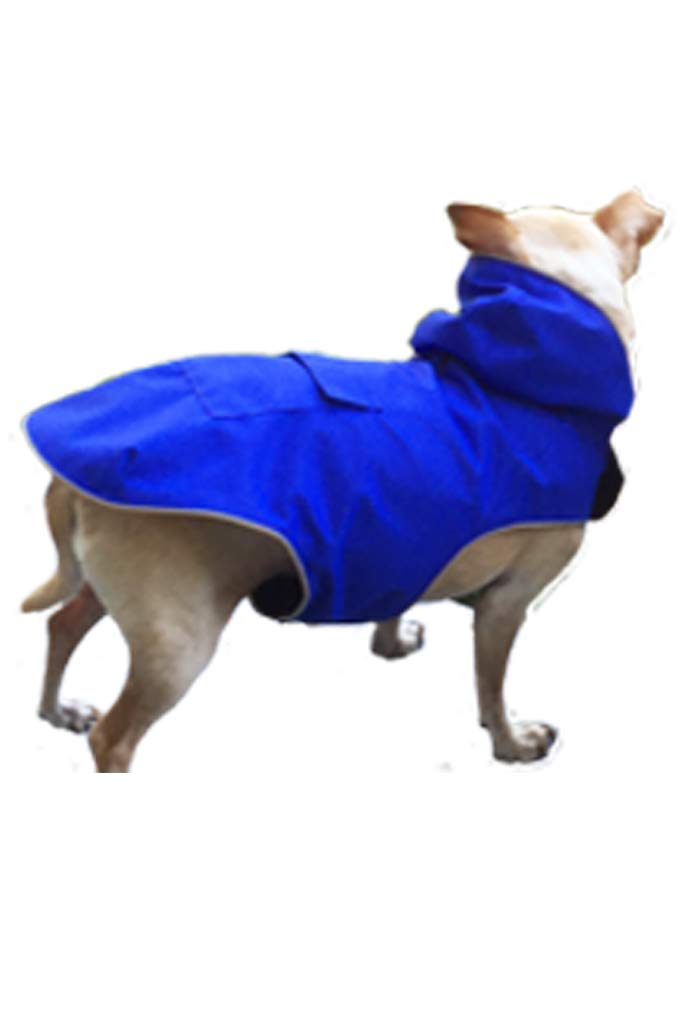 Ladybird Line Blue Mandi and Marley Moments Lightweight Waterproof Dog Raincoat #110 (XL-22) by Ladybird Line