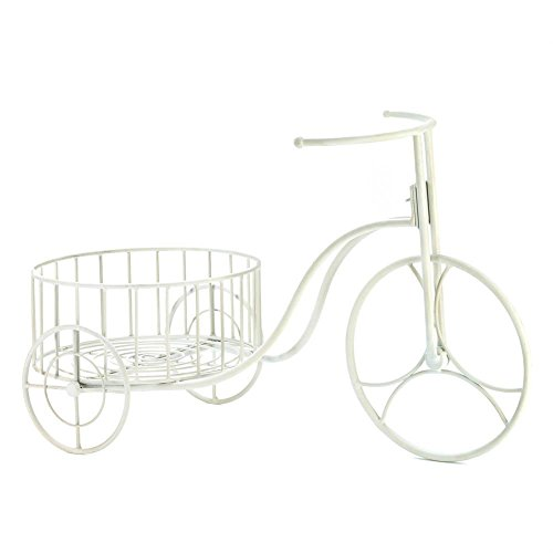 (Zingz and Thingz Tricycle Plant Display in White)