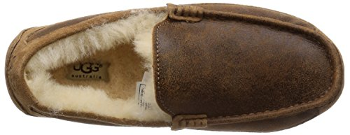 Ugg Chestnut Twinface Ascot 5775Chaussons Homme Bomber Jacket j3Lc5q4RAS