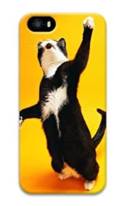 Cats boss 3D Case stylish iphone 5S case for Apple iPhone 5/5S