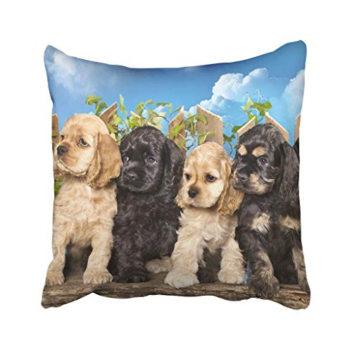 - Jidmerrnm 18X18 Inch Throw Pillow Cover Polyester Brown Puppy Family American Cocker Spaniel Dogs White Funny Litter Adorable Animal Basket Cushion Decorative Pillowcase Square for Home