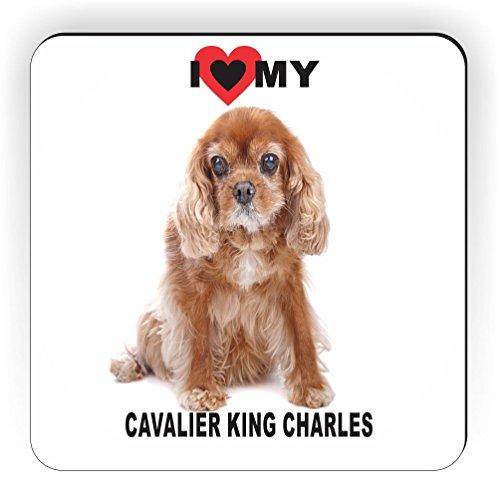 Rikki Knight I Love and White Cavalier King Charles Dog Design Square Fridge Magnet, - Charles Magnet Cavalier King