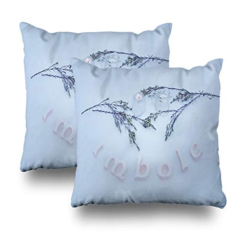 LALILO Set of 2 Throw Pillow Covers, Winter Ancient Bright Dark Dust Fairy Fairy Tale Fantasy Double-Sided Pattern for Sofa Cushion Cover Couch Decoration Home Gift Bed Pillowcase 18x18 inch -