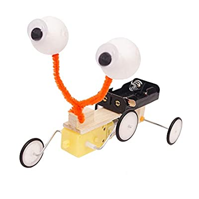 N2 jikaixiang Brain Toys Hands-on Ability Thinking Activity Kids Educational DIY Reptile Robot Model Kit Science Experiment Electric Toy: Home & Kitchen