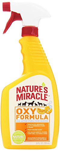 Nature's Miracle Orange-Oxy Formula Dual Action Stain & Odor Remover, 24-Ounce Spray (5700)