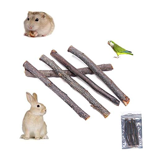 Chew Twigs - Computers & Electronics - Apple Branch Wood Chew Stick Twig Rabbit Rat Hamster Dental Care - Toys Home Events Beauty Sports Weddings Girls Computers Phones Garden Accessories Case Electronic