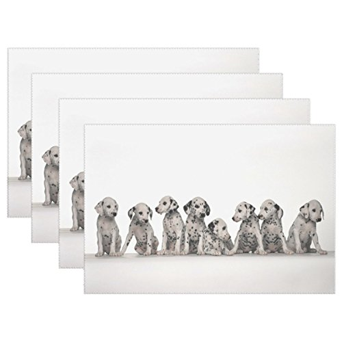 VNASKL Animal Dog Great Dane Blackandwhite Mix Small Puppy Adorable Pet Heat-resistant Table Placemats Set Of 4 Stain Resistant Table Mats Washable Eat Mat Home Dinner Decorative (Best Great Dane Mixes)