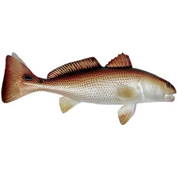 Replica red drum fish ocean restaurant wall for Saltwater drum fish