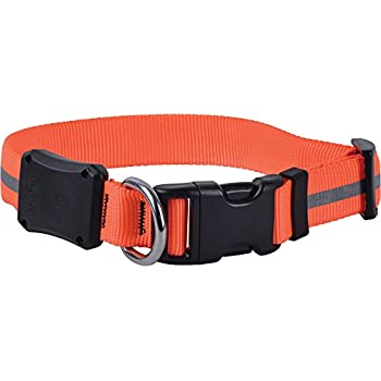 Amazon Com Nite Ize Nite Dawg Light Up Dog Collar Red Led