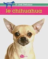 Le chihuahua NE